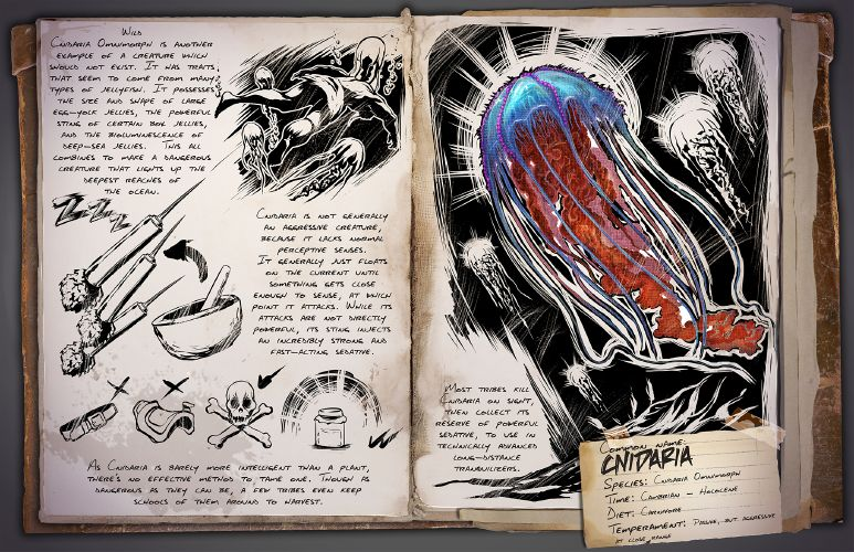773px-cnidaria_dossier